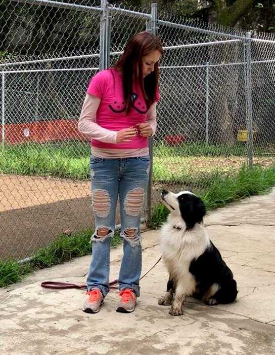 Mejorando la comunicación con nuestro perrito